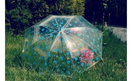 Deštník s modrým puntíkem průhledný